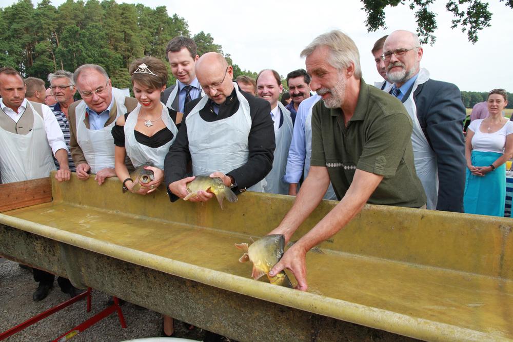 Bayerische Karpfensaison in Willersdorf eröffnet