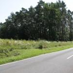 Spatenstich Geh- und Radweg (2)