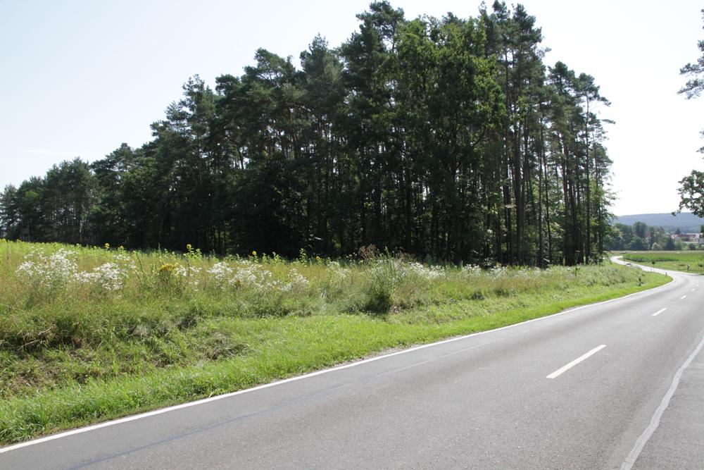Mehr Sicherheit für Fußgänger und Radfahrer