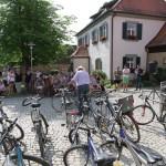 Fahrradversteigerung Gemeinde Hallerndorf (1)