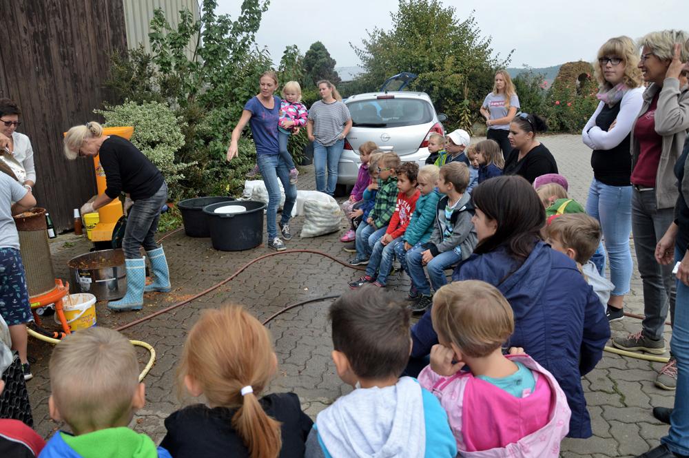 Kindergarten zu Besuch bei Biolandwirt