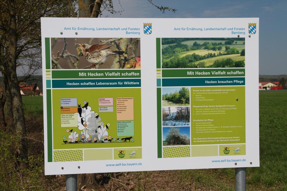 Jahre der Biodiversität – Allianz Regnitz-Aisch stellt Schautafeln auf